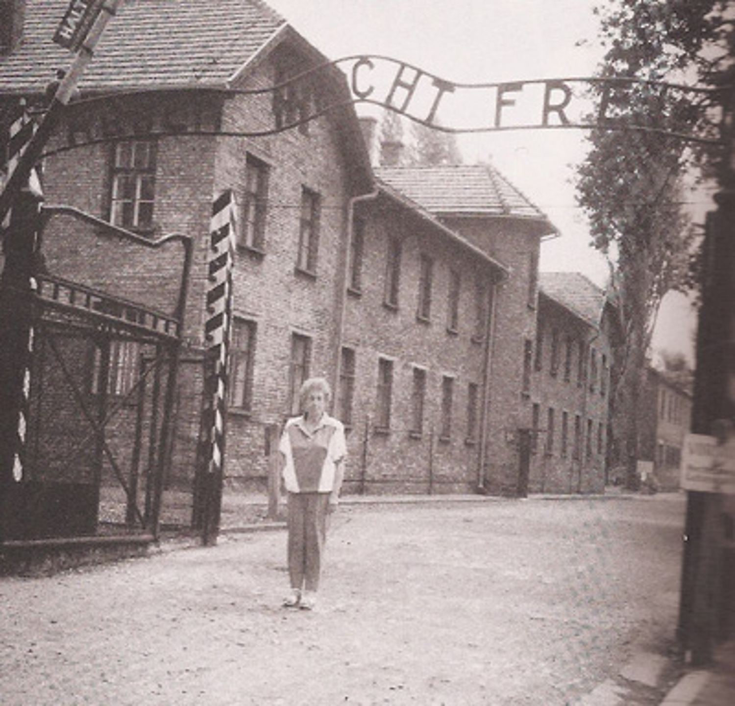Rena, #1716 in Auschwitz, survived over 3 years.